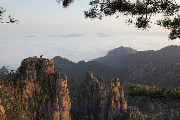 "Huang Shan-""Stone Monkey Gazing Over the  Sea of Cloud"""